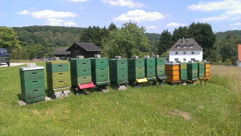 Unser Bienenstand